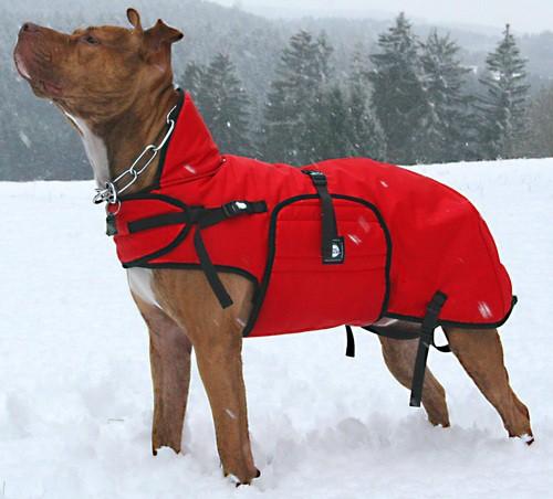 Dogcoat